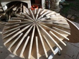 lenticular shield