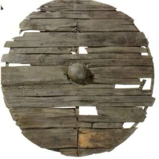 linden wood shield