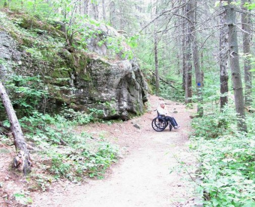 Wheelchair hiking.jpg