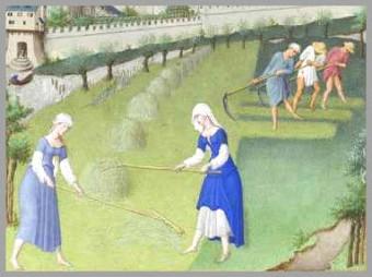 Idade Media - mulheres trabalhando na agricultura.jpg