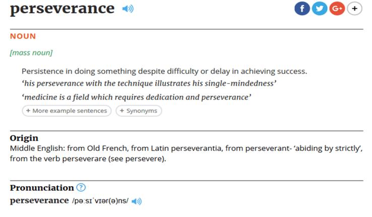 perseverance def